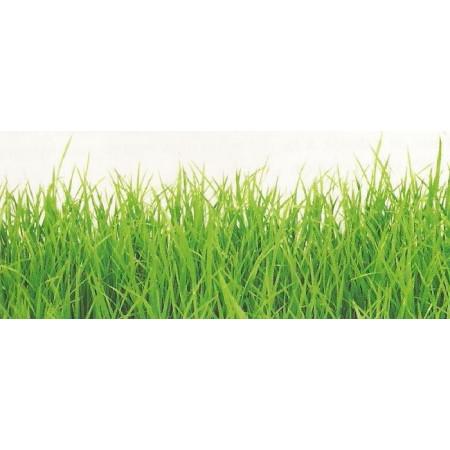 GRASS SPECIAL SUBSTRATUM