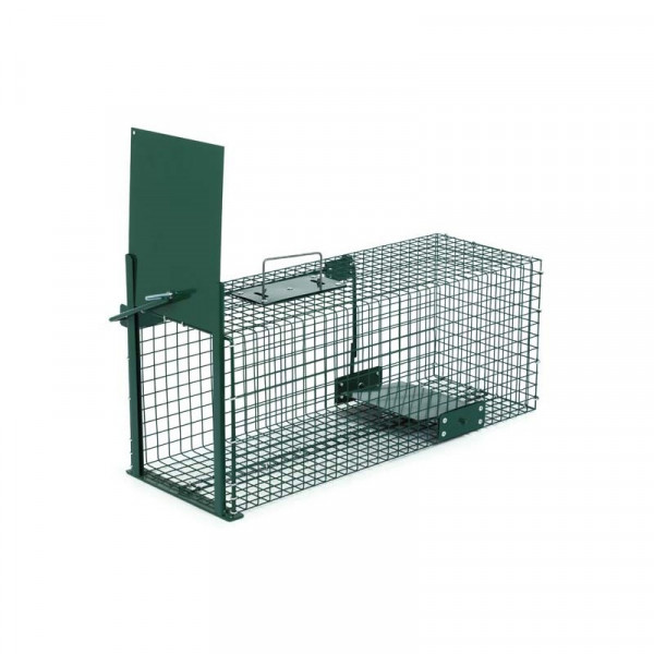 PAINTED CAGE TO CAPTURE RABBITS