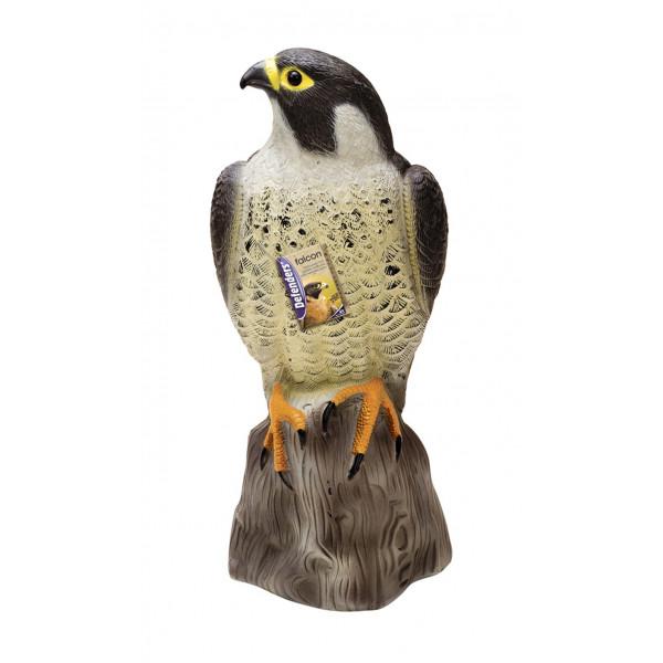 FALCON DETERS BIRDS