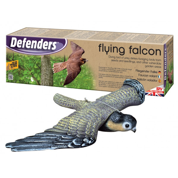 FLYING FALCON DETERS BIRDS
