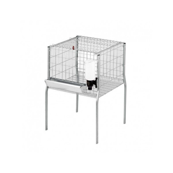 CAGE 1 DEPARTMENT FOR FATTENING CHICKENS