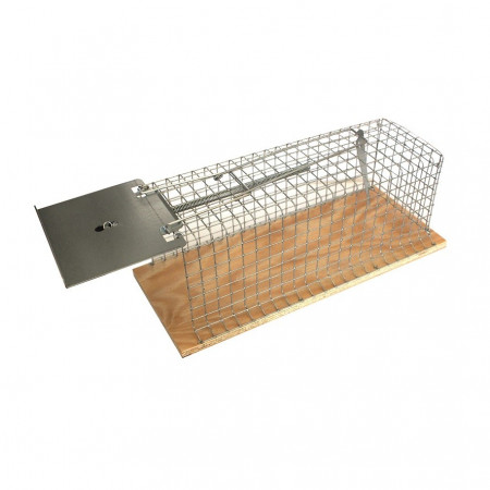 CAPTURE OF RATS IN METAL CAGE