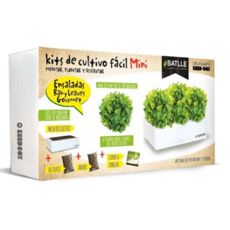 KIT BOX MINI - SALADS