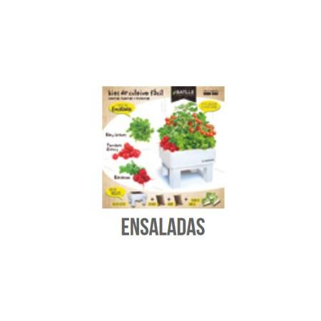 KIT BOX - SEED BOX ENSALADAS