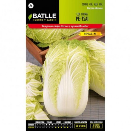 CHINESE CABBAGE PE-TSAI