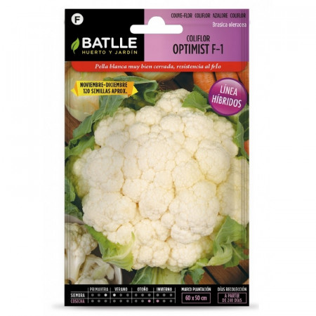 HYBRID CAULIFLOWER OPTIMIST F-1