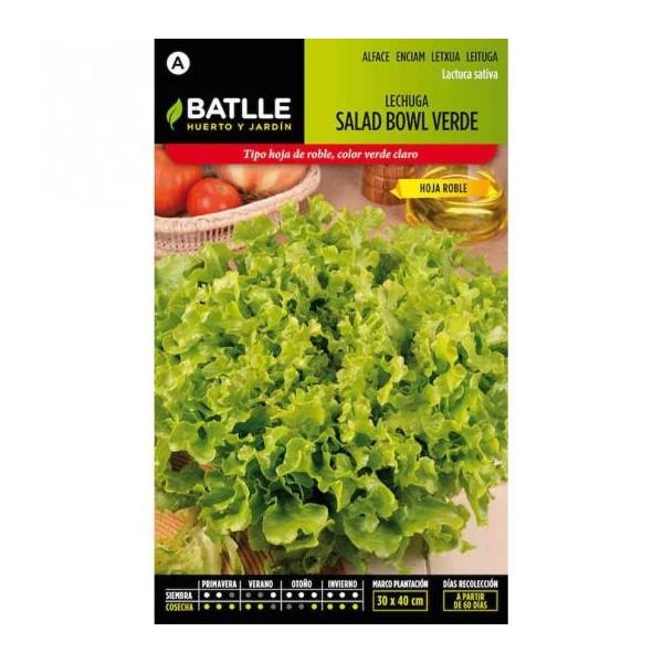 GREEN LETTUCE SALAD BOWL