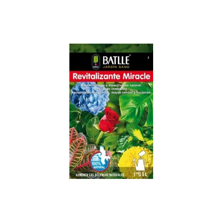 REVITALIZING MIRACLE