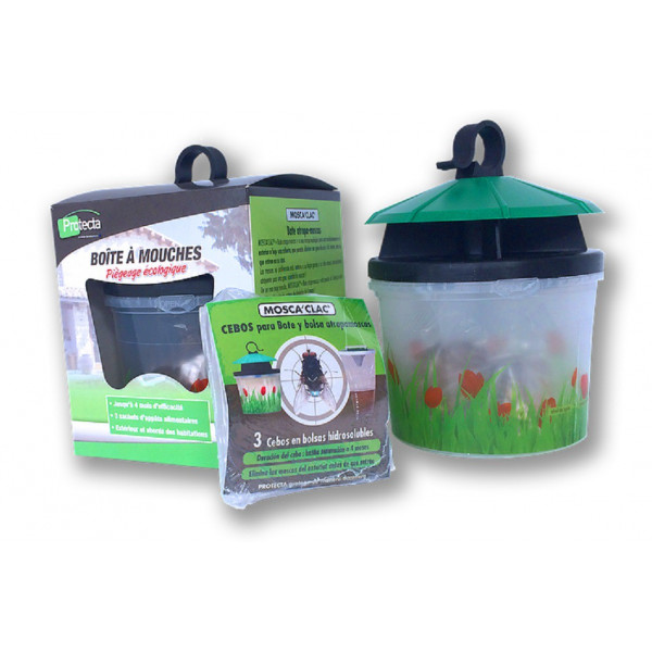 TRAP FOR FLIES WITH NATURAL BAIT