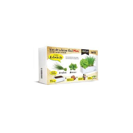 Kit box mini culinarias
