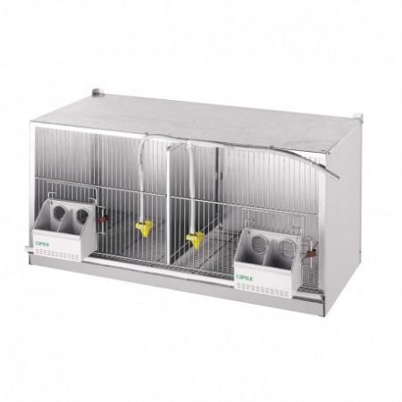 PIGEONS CAGE EXPOSURE 2 DEPARTMENTS (1M)