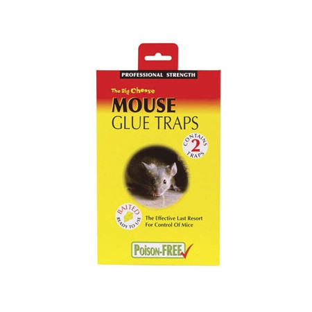 MOUSE GLUE TRAP PACK-2