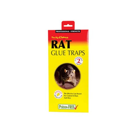 GLUE TRAP RATS PACK-2
