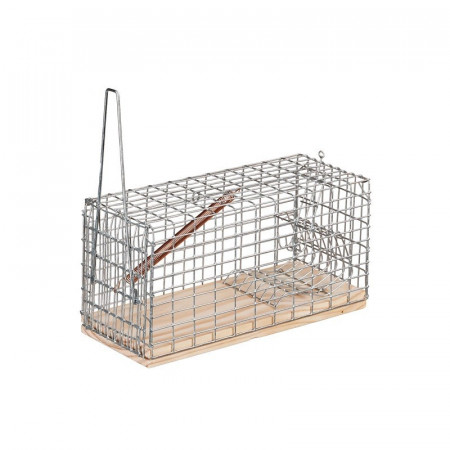 cage en bois et treillis métallique pour capturer des souris vivantes
