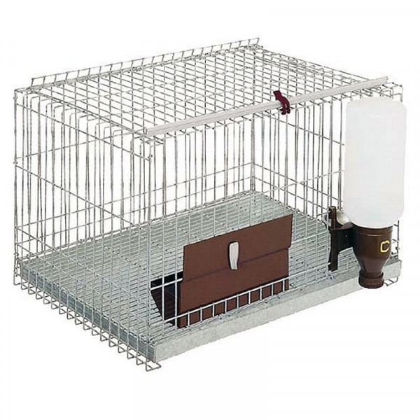 CAGE TO FERRETS