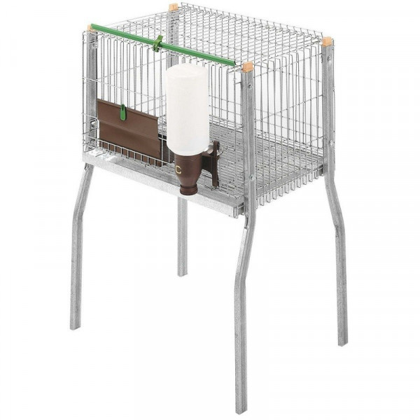CAGE WITH PAWS