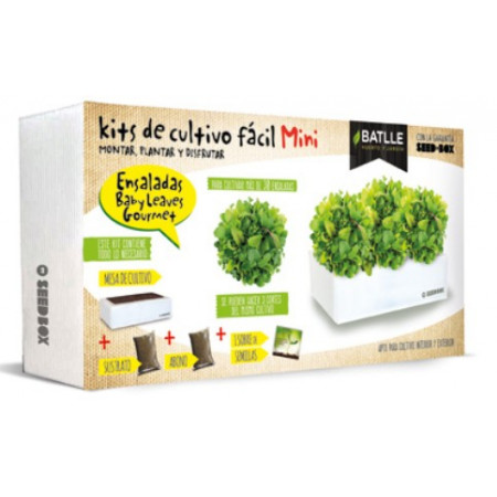 KIT BOX MINI - SALADS