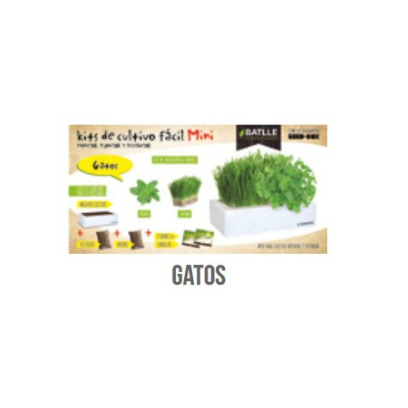 KIT BOX MINI - CAT GRASS