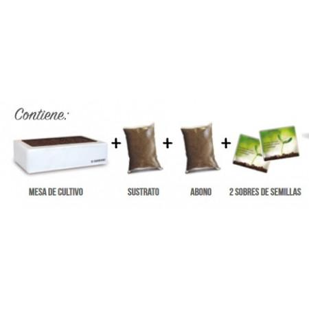 KIT BOX MINI - CULINARIAS