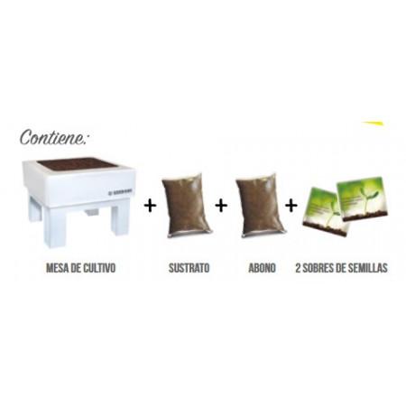 KIT BOX - SEED BOX CULINARIAS