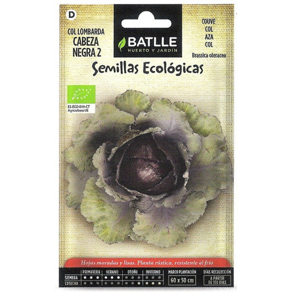 LOMBARDY CABBAGE ECO