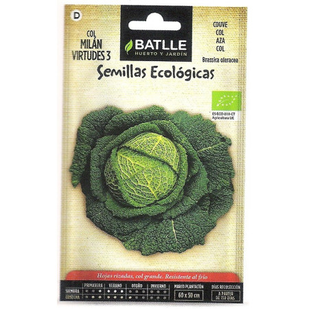 VIRTUES CABBAGE-ECO