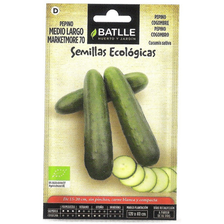 CUCUMBER MARKETMORE 70-ECO