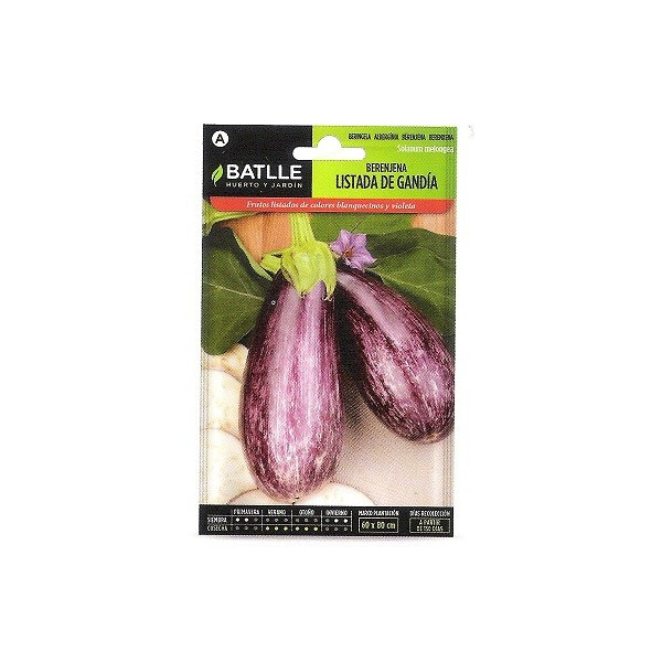 LISTED AUBERGINE FROM GRANDIA