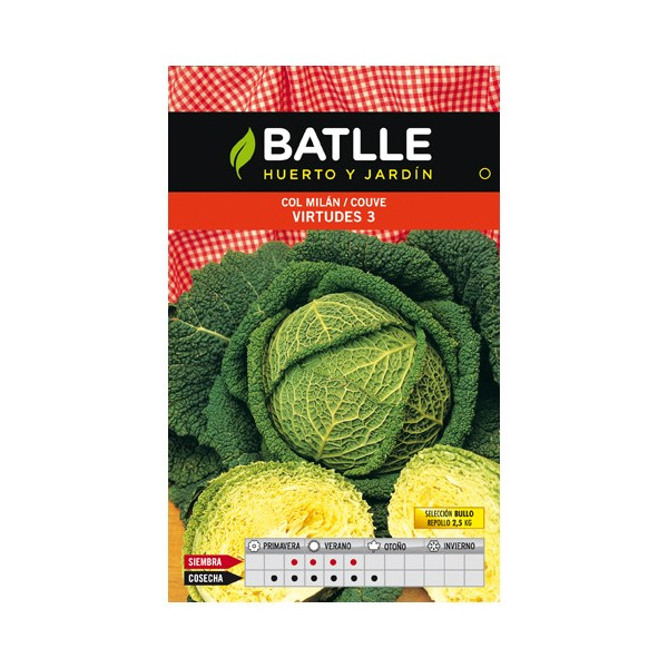 CABBAGE MILAN VIRTUES 3 SEL. BULLO