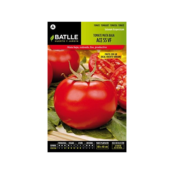 TOMATE ACE 55 VF