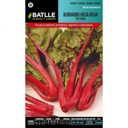 RED LEAF RHUBARB VICTORIA