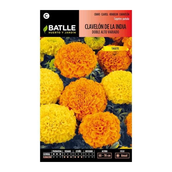 DOUBLE TALL MARIGOLD FROM INDIA