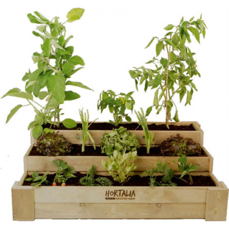 GROWING TABLE BOX STAIRS