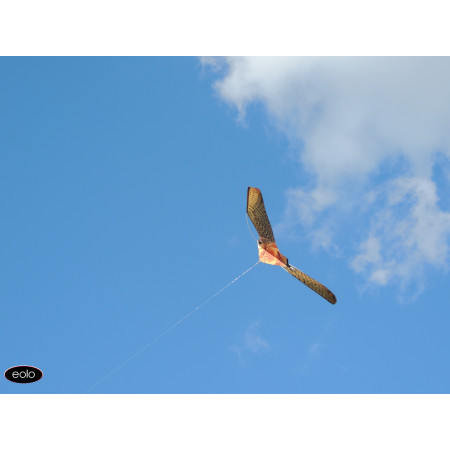 Scarecrow hawk eolo mast 7m