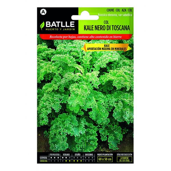 Tuscan kale nero cabbage seeds