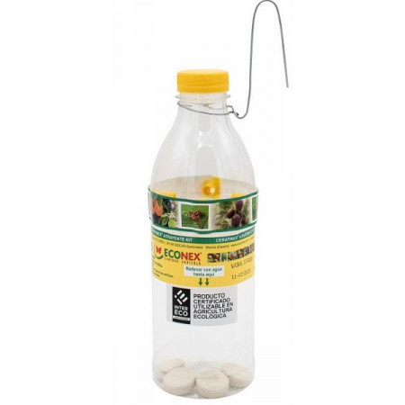 Trap and attractant for the fruit fly