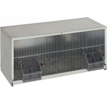 cage for exhibition and breeding of pigeons