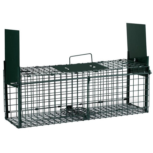 Two-door rodent trap cage