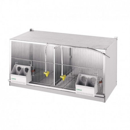 PIGEONS CAGE EXPOSURE 2 DEPARTMENTS (1M)