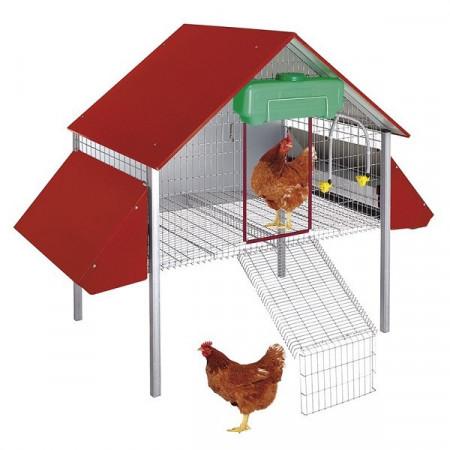 nid pour 12 poules