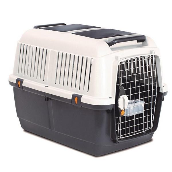 transporteur avec des détails pour voyager avec notre animal de compagnie en toute sécurité.
