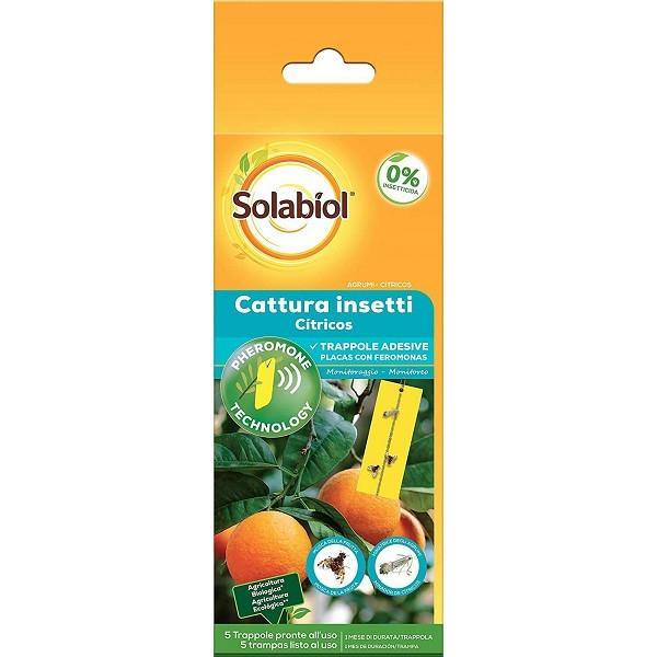 láminas adhesivas con envase de 5 trampas para atraer insectos de los citricos.