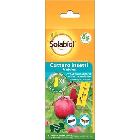 láminas adhesivas con feromonas para los insectos nocivos para los frutales
