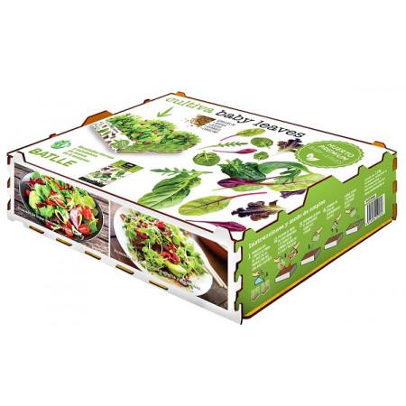 caja para cultivo de brotes de hojas de brotes tiernos